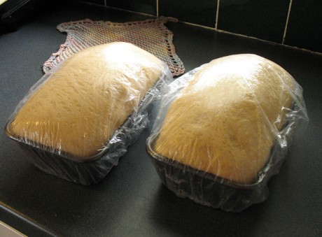 Disposable shower caps keep bread moist