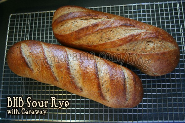 Sour Rye loaves
