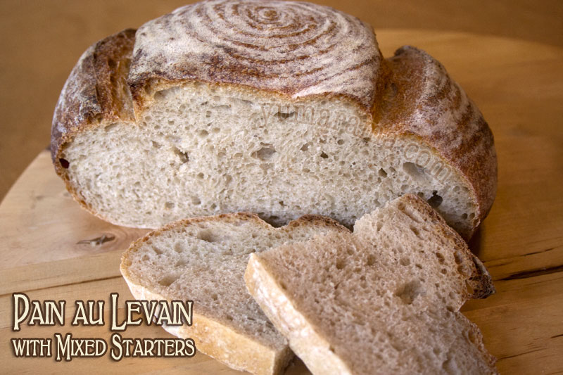 Pain au Levain with Mixed Sourdough Starters